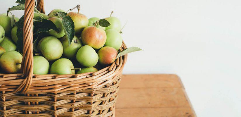 Cómo incluir alimentos con fibra en tu día para verte y sentirte mejor